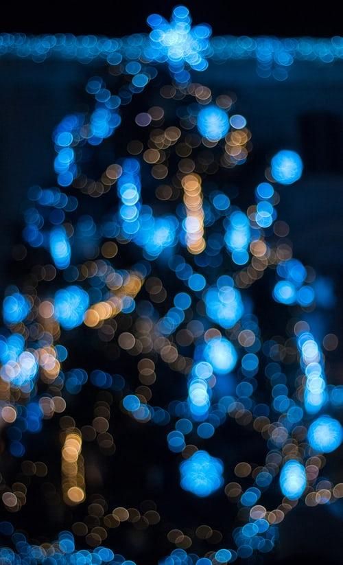 Image of blue Christmas tree